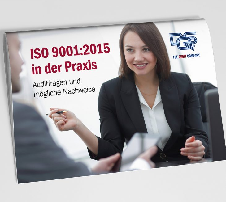 ISO 9001:2015 in der Praxis: der Auditleitfaden