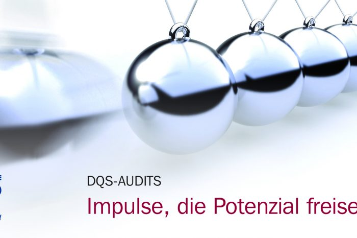 Remote Excellence im Audit