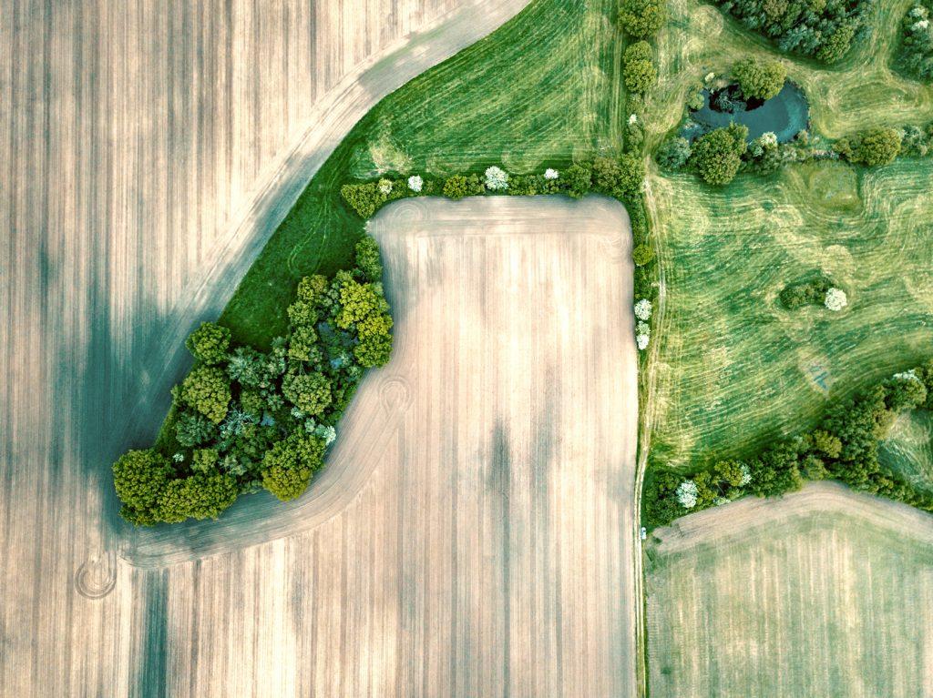Umweltschutz, Corporate Social Responsability, Nachhaltigkeit